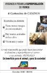 Campañas Gráficas :: Campaña Castración de Caninos