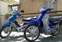 Motocicletas División Tránsito (2009)